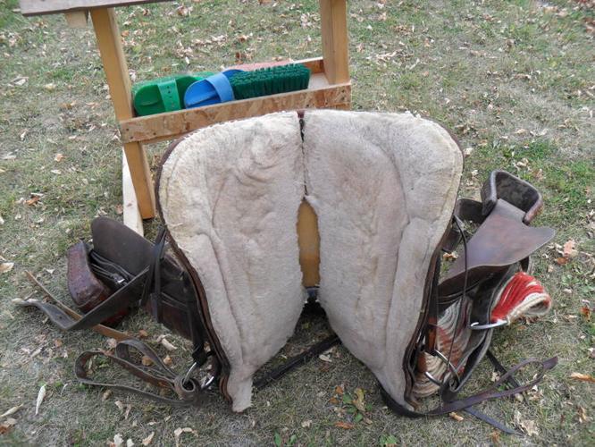 15.5 inch Saddle