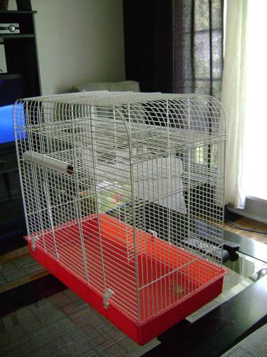 2 Free Gerbils to good home include cage, wheel and water bottle