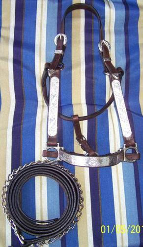 6 Show Halters Circle Y/Billy Royal Sterling