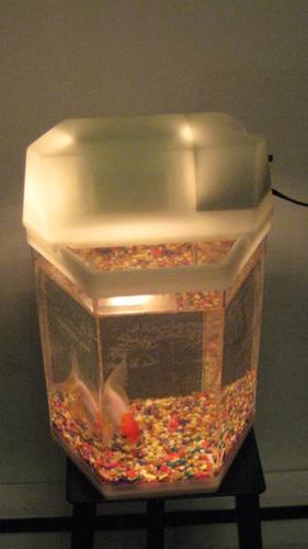 GLOW IN THE DARK Octagon Starter Fish Tank