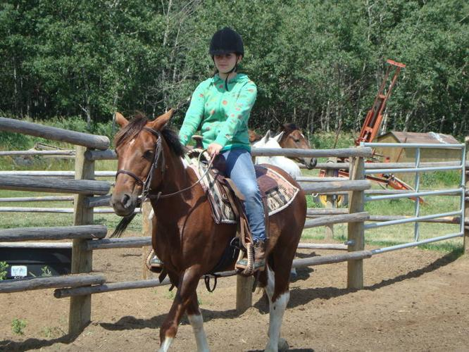 Gray Acres- Beginner/Learn to Ride Lessons and Camps