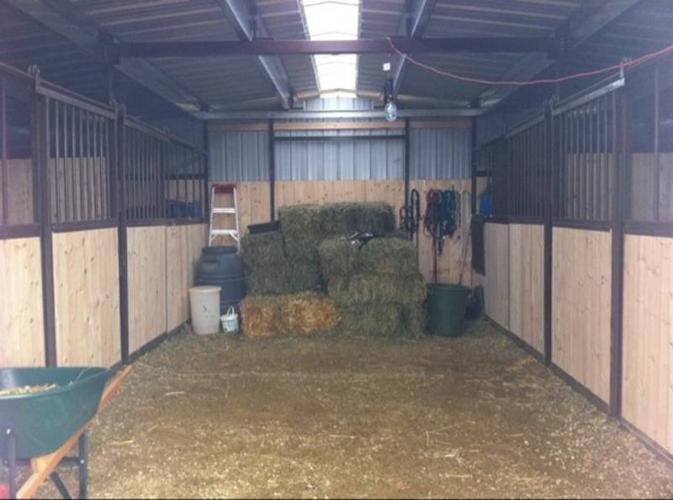 Horse Board- Thorsby Area
