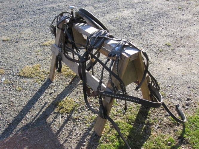 Miniature horse harness
