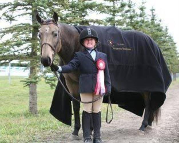 Quarter Pony for sale