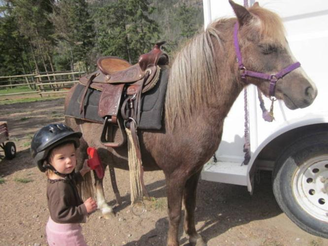 ~*Sold*~Small kids Pony