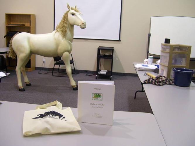Understanding Common Horse Diseases Workshop