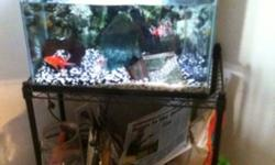 This is a running tank and have everything in it, filter, heater, sand and rocks, air pump as well as fish. Comes with extra food and extra filter cartridge. I'll give a metal stand that is shown in the picture with it. This ad was posted with the Kijiji