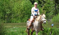 I thought she was sold but the person never came to pick her up, so I am posting her again. 13.2hh pony mare she is 5 years old. Green broke (w,t). I don't have the experience in training a young horse. I need an older beginner horse for my son and I.