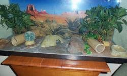 2 Leopard Geckos. Very healthy, they come with very nice tank and all accessory's, heating pad is under tank and works perfectly. 200 is very cheap for everything included. Also comes with Rep-Cal Calcium ultrafine powder, and cricket food. The reason for