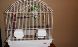 *NEW PRICE* 2 budgie birds with cage and accessories, less than a year old. $130