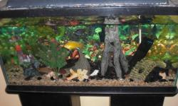 This set up comes with everything you need, including fish! This is a really nice aquarium.  Three feet long, with double pillar stand.  Comes with lid, light, heater, air pump, filter, all decorations and a whole bunch of fish.  There are three or so