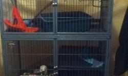 I am looking at downsizing and freeing up some space in my home. Sadly I have to part with my ferrets. Here is a list of everything you would receive with them. 3 friendly ferrets Ferret nation two level cage Large bag of mazuri ferret food Bottle of