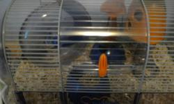 I have three pet mice with a cage, that I need to sell, as I already have 7 hamsters, and it's getting too much to handle. The mice are all female, there's a white, black and really dark brown one. I named them Isabelle (white), Nymphadora (black) and