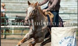i am offering my 9yr old appaloosa gelding for sale Gus stands about 15 to 15.1 hands he is an awesome barrel horse, in his first year running barrels he has won in the 4D and was in the middle of the 3D and hes got more to give! very safe and