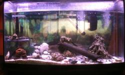 Tank comes with stand, hood, light, heater, filter and fish. Call or text 604 798 1111