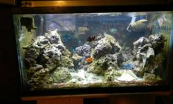 I have for sale my 48 Gallon salt water aquarium.  Comes complete with 30 Gallon sump with overflow system.  backpack style protein skimmer, 3 powerheads, heater, and external canister filter.  It has two corallife high power flourescent lights.  It also