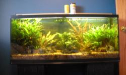 I am moving and need to sell my aquarium.  The complete package includes all the live plants, and fish.  The tank is a complete eco-system with live planted beds, heater, double grow light canopy, and an over sized external canister filter system (70 gal