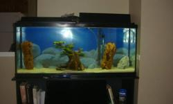 Hi     I would like to sell my 55 gallon fish tank with stand which is 1 year old It Includes:- 1 fish tank - 55 gallon .   48 inch  length , 12 &1/2 inch width  , 20 & 3/4 inch height  ..don't remember the actual cost-more than $200 1 fish tank  stand-