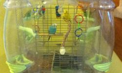 """I have 5, 1-2 year old budgies and a vision 110 cage 20""""L x 22""""h x 16""""w and cage stand with 2 storage compartments. The cage is in very good condition."""