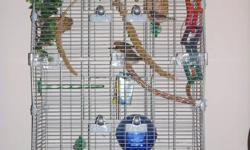 I would like to sell my 5 Zebra Finches (3 males, 2 females). They are soon to be 2 years old and will make a lively and musical addition to your home. Included is the cage I bought for them, as well as all the accessories within (perches, toys, birdbath,