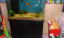 """36""""W X 18""""D X 21""""T Includes stand, top, twin tube light strip, 300 watt heater, 20 gallon Oceanic sump, return pump, plumbing, sand, background, and corner overflow. Looking for best offer."""