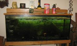 I have for sale a 65 gallon fish tank with a oak stand and oak canopy with light.  everything goes with. filter,gravel,ornaments,fish(if you want) anything that i have that goes with the tank. Tank looks green has a green live plant that grows like crazy