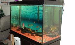 I am selling my 65 gallon tank with: fluval canaster filtration system Rocks stand chemical fish