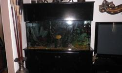 90 Gal fish Tank complete very well maintained, appr 15 fish & plants, rocks, logs ,colored bubble night lights , bubble maker and filter , stand included plus extras.   Also have a 50 gal with stand and acc  $200.00