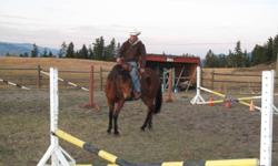 Don?t buy another horse!Get the one you have trained. ?I?m a Foundational Trainer with a program that equips horses for entry into any discipline.? Responsible horse training is definitely a lifelong endeavour. Hello, my name is Luke Walker. I've been