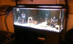 IM SELLING A 150 GAL. AQUARIUM COMPLETE WITH EVERYTHING. BLACK CABINET STAND, WITH GLASS SHELVING, 2 LARGE CANNISTER FILTERS, HEATERS, BUBBLERS, CURRENT PUMPS, ROCK, LIGHTING, DECORATIONS (LARGE CASTLE, SKULLS ETC). CLEANING TOOLS, NETS, WATER TESTING