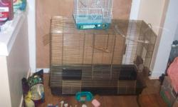 hi i have a big bird cage for sale with a medium sized cage food dishes food perches, sand paper perch covers and a few other things. the big cage includes both dishes a parrot rope and swing and the little cage comes with one food dish and 2 perches.the