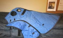 Will be in Winnipeg on Boxing Day and Tuesday AM......Shedrow Nylon Cooler Style Rainsheet(navy blue)-excellent for use at horse shows when waiting for classes and is raining out-very good condition-$20(paid $40)...English Fleece Show Pad w/number