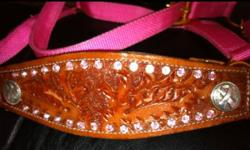 I have one of a kind halters, reins, bridles, spur straps and other tack for sale for reasonable prices. Bling leather bronc nose band halters $40 - $50 Leather gaming reins with blue and clear stones $60 Spur straps in pink, blue, lime green, black, and