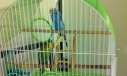 Casper(blue) and liz(green) are two beautiful budgies. I have had them for over a year and am unable to take future care of them as I am moving into a new home where my land lord does not allow pets. Included in the price is a bird cage with a stand,