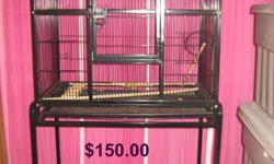 Hi, I am selling all 5 budgies.  Initially I wanted all budgies to go together but two have formed a union.  The boy and girl are mates and want nothing to do with the other 3 females.  The 2 can go for $30.00 and the other 3 females can go for $45.00.
