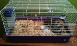 I am selling a 1 year old bunny. This bunny comes with full cage as well as a full bag of shavings for the cage and good. Also included is its water dispenser and some toys and treats. We do not have enough room in our house anymore and need to find a