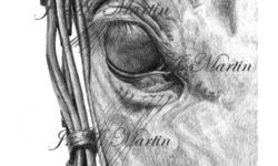 Are you looking for a gift for the horse lover in your life? This may be exactly what you're looking for!!! Graphite portraits of your beloved horse based on photographs you provide. I offer a wide variety of options, from a simple headshot to candids to