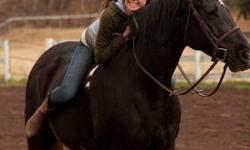Hello there! Im a student looking to do ANY kind of barn/horse chores in exchange to do a little bit of riding starting in February . I could work 1-2 times a week mucking out stalls, turning out, cleaning, watering or really any kind of farm work. Im