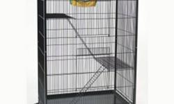 NEED HER GONE ASAP!   FERRET NATION CAGE FOR $100   FOR ALL FERRET ACCESSORIES FOR $25 NOTHING IS MORE THEN A COUPLE OF WEEKS OLD AS WE BOUGHT IT ALL SLOWLY.   FERRET BED, LITTER PAN WITH SCOOP, FERRET OR CHINCHILLA, HOUSE, BIG BAG OF FERRET FOOD, DENTAL