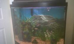 I am selling a 16 gallon fish tank and stand, This tank comes with fish and all the accessories. I am asking 150.00 obo
