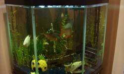 52 gallon fishtank. Full height 4.5 ft Width 2.7ft Fish included. One catfish.One bottom feeder ( placosomus ) And an assortment of common freshwater fish. All equipment for caring of tank and fish are included as well. ( water conditioner, waste control,