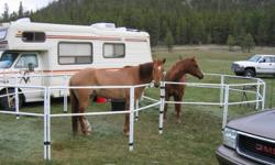 GIDDY UP N GO CORRALS Extremely portable corral system that is all steel and compacts down to fit in a bag.  Set of 8 all steel, powder coated, panels and each opens to 4 feet tall x 5 feet wide.  Each panel compacts down to 29 inches x 36 inches.  All 8
