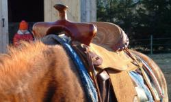 I have a used 15 inch western saddle for sale (semi QH bars?) It would NOT fit a horse with very high withers (this is the reason why I am selling it) VERY comfortable saddle in great condition, it's all suede with a deep seat so it really keeps you in