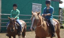 Gray Acres- Beginner Riding Lessons   Come and enjoy yourself on nice, safe lesson horses   Student begin by learning the following:   - Safety around horses on the ground and in the saddle.  - How to catch and tie up a horse  - General horse tools, and