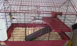 I have a guinea pig cage for sale.  It includes the water bottle, feeding bowl, hay ball, toys, second level landing for feeding and hut.  The cage is in excellent shape.  We are located in Humboldt but I could deliver to Saskatoon on November 1.  If