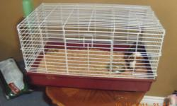 For Sale   3 year old Guinea Pig with cage, water bottle and feeding dish.   Everything you need to care for the pet.   Selling because we have too many pets and not enough room.