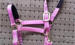 "-Brand new, Med/Full size Pink halter. Used once. Has adjustable nose & throat latch. Asking $35 firm. -Used, Med size Purple halter. Good condition. Asking $12 -Used Multi color lead rope. Asking $5 -New, 50"" black nylon cinch. Used twice. Doesn't fit my"