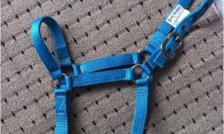 -New, Med size Turquoise. (Black Stallion). Used twice. $20 -Brand new, Med/Full size Pink (Cavalier). Used once. Has Adjustable nose & throat latch. $35 -Used, Med size Purple (Weaver). Good condition. $12 -Used Multi color lead rope. $5 -Used, Med size