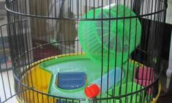 two hamsters with cage but cant go in one cage together 25obo for one hamster and the cage and 10 just for one of the hamsters. comes with cage one hamster,dishes, wheel,chew toys ect must sell asap open to offers but pick up only