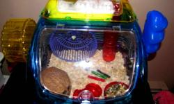 I have a hamster we bought at the NG pet store in Sept. He is very cute. He comes with cage that cost $100, plus food, brand new shavings not opened, coconut house, extra tunnel big ball to roam in, and 2 packages of fluff to sleep in. He has a middle